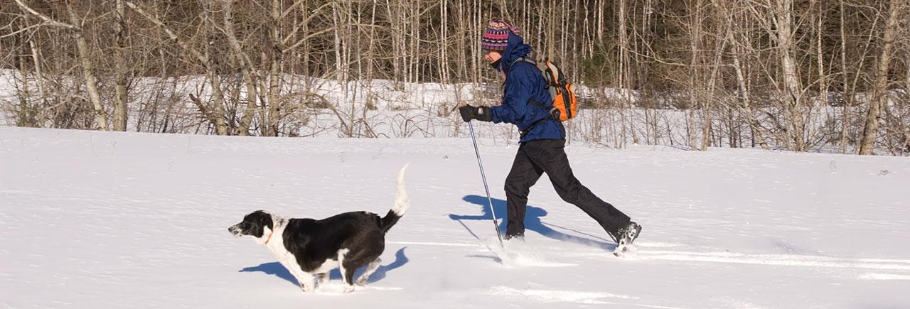 Cross Country Ski Tahquamenon Country