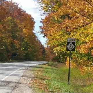 M-123_sign and fall leaves
