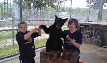 Oswald's Bear Ranch